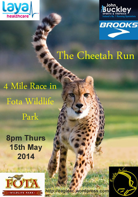 Cheetah_Run_2014_Flyer_1