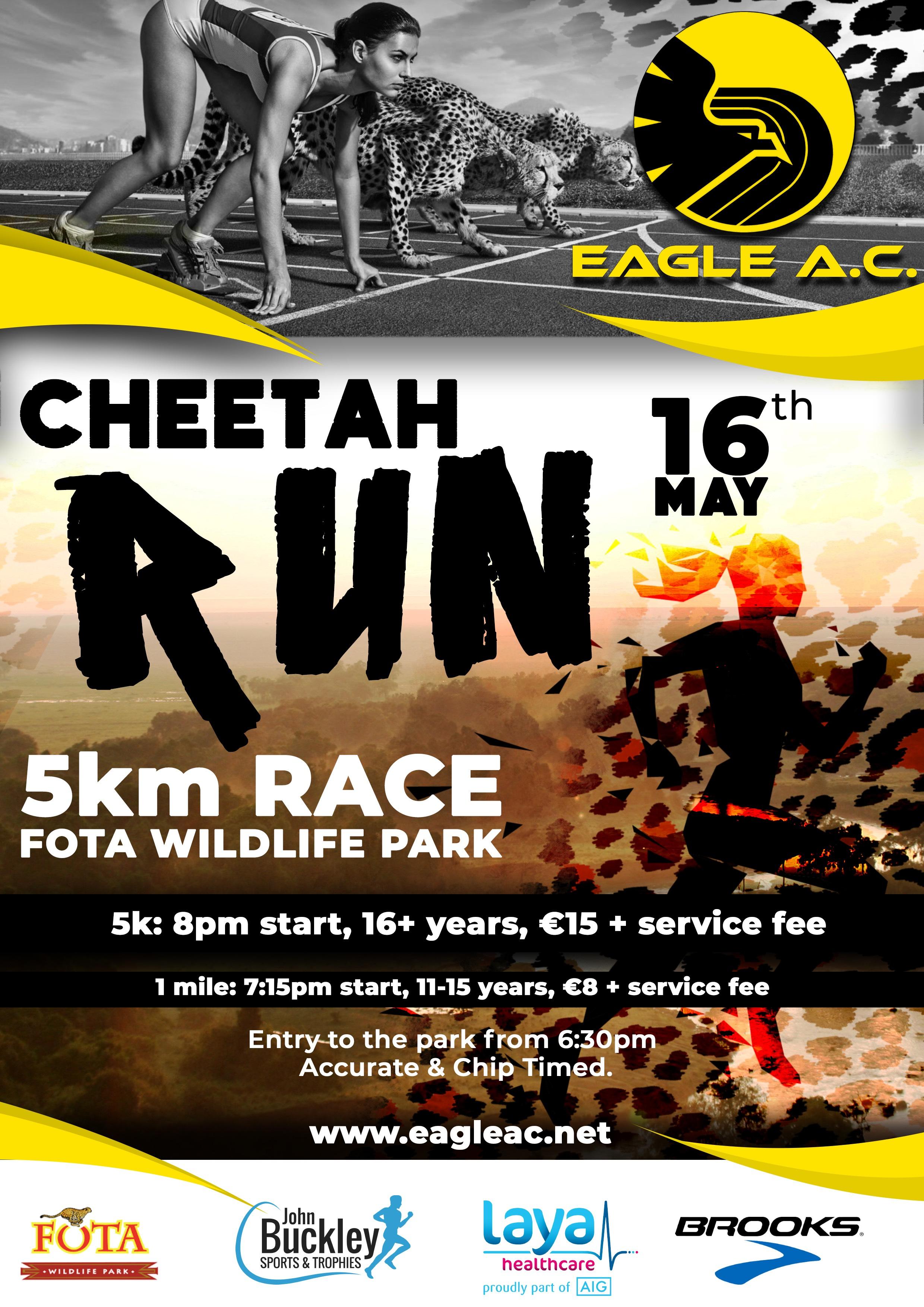 Cheetah Run 2019