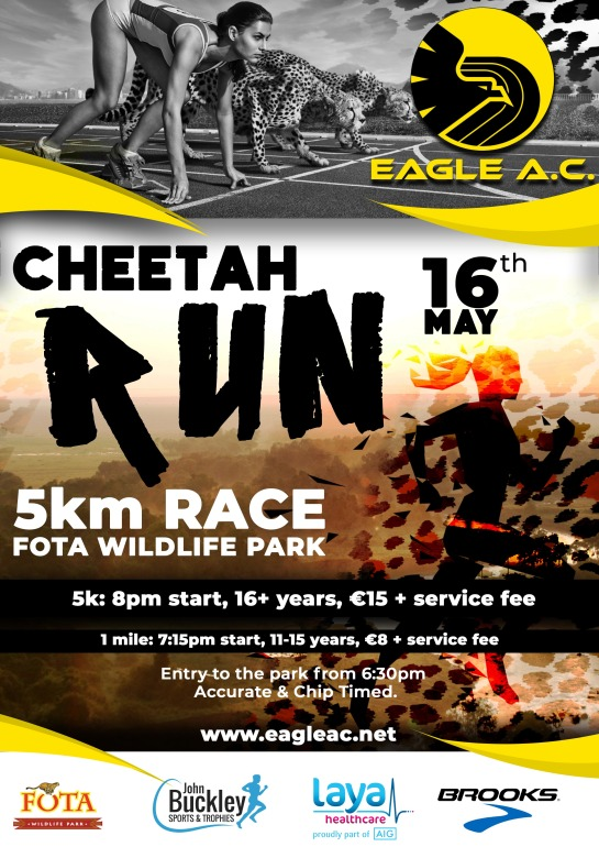 Cheetah Run 2019